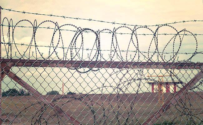 Hàng rào lưới mắt cáo - thép gai