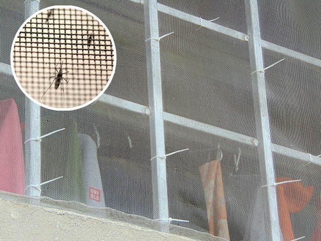 Mua lưới inox chống muỗi